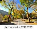 arrow town  new zealand | Shutterstock . vector #57125755