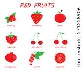 red fruits. | Shutterstock .eps vector #571258906