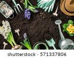 gardening tools  hyacinth... | Shutterstock . vector #571337806