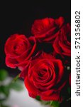 Stock photo beautiful valentines roses on dark background 571356802