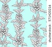 seamless pattern coffee tree... | Shutterstock .eps vector #571420216