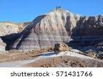 Blue Mesa Trail  Az   November...