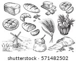 bread vector hand drawn set... | Shutterstock .eps vector #571482502