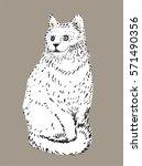 white cat illustration | Shutterstock .eps vector #571490356