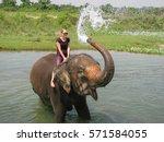 Bathing With Elephant