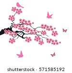 vector illustration of cherry... | Shutterstock .eps vector #571585192