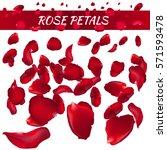 Stock vector rose petals vector illustration red 571593478