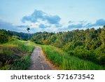 Beautiful Tropical Landscape...