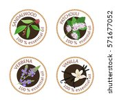 set of 100 essential oils...   Shutterstock .eps vector #571677052