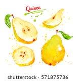 watercolor illustration of... | Shutterstock . vector #571875736