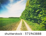 beatiful morning field with... | Shutterstock . vector #571963888
