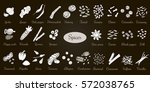 big vector set of popular... | Shutterstock .eps vector #572038765
