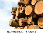 cut logs | Shutterstock . vector #572045