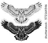 eagle flying on white... | Shutterstock .eps vector #572164546