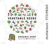 vegetable seeds banner organic...   Shutterstock .eps vector #572198365