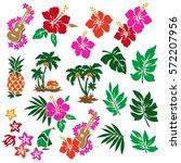 hibiscus flower illustration | Shutterstock .eps vector #572207956