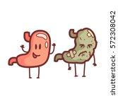 stomach human internal organ... | Shutterstock .eps vector #572308042