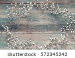 frame of delicate little white... | Shutterstock . vector #572345242