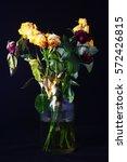 dried flowers   Shutterstock . vector #572426815