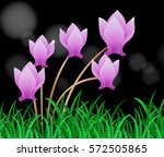 purple flowers on black...   Shutterstock .eps vector #572505865