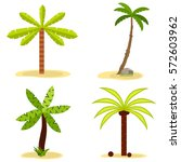 palm  palm tree icon  coconut ... | Shutterstock .eps vector #572603962