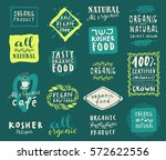 retro style set of natural ... | Shutterstock .eps vector #572622556