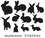 vector silhouette of the rabbit ... | Shutterstock .eps vector #572623162