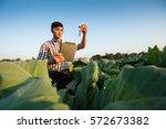farmer researching plant in...   Shutterstock . vector #572673382