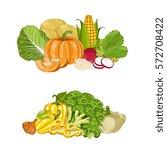 fresh organic vegetable... | Shutterstock .eps vector #572708422