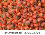 Small photo of Closeup oil palm - African oil palm, Macaw fat, (Elaeis guineensis Jacq.)