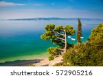 beautiful landscape with... | Shutterstock . vector #572905216