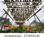 Small photo of Air-dried Cod in Reine, Norway