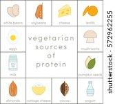 vegetarian sources of protein ... | Shutterstock .eps vector #572962255