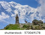 Alpine ibex (Capra ibex). In background Mont Blanc, France - stock photo