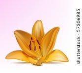 photo realistic vector... | Shutterstock .eps vector #57306985