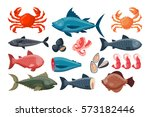 sea food vector illustration. | Shutterstock .eps vector #573182446