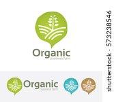 organic farm  farmer  market ... | Shutterstock .eps vector #573238546