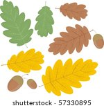 oak leaf fall | Shutterstock .eps vector #57330895