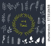 vector  hand drawn herbals ...   Shutterstock .eps vector #573318658