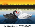 couple swans at peaceful lake....   Shutterstock .eps vector #573362452