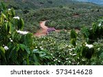 amazing scene at vietnamese...   Shutterstock . vector #573414628