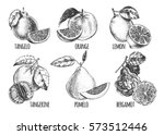 ink hand drawn set of different ... | Shutterstock .eps vector #573512446