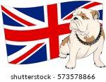 english bulldog on a background ... | Shutterstock .eps vector #573578866