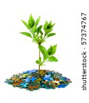 Puzzle And Plant Isolated On...