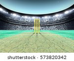 a generic seated cricket...   Shutterstock . vector #573820342