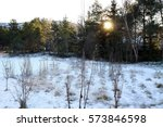 Sun Rises Behind Trees In A...
