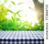 Blue Checkered Tablecloth...
