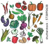 colored inky vegetable sketches.... | Shutterstock .eps vector #573890638