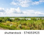 the nature of the banks of the... | Shutterstock . vector #574053925