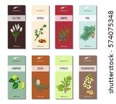 essential oil labels set. tea... | Shutterstock .eps vector #574075348